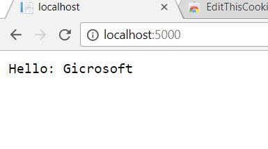 dotnettency-cookie-gicrosoft.PNG